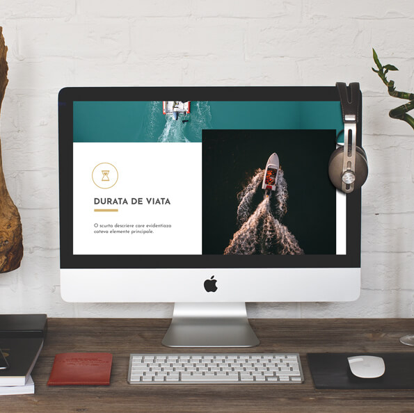 site profesional barci